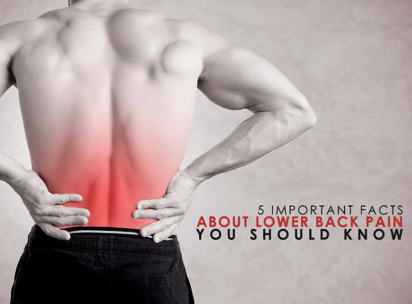 5 Important Facts About Lower Back Pain You Should Know